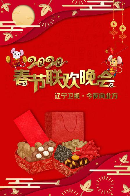 辽宁卫视春节联欢晚会 2020