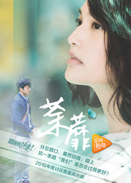 荼蘼(台湾剧)