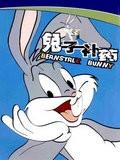 兔宝宝-兔子补药
