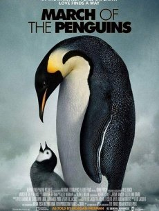 帝企鹅日记