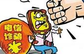 """""""徐玉玉案""""写进最高检工作报告 2016年批捕电信网络诈骗犯罪19345人"""