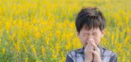 花粉过敏的人对蔷薇科食物要格外小心