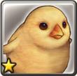 小鸡.png