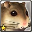 仓鼠.png