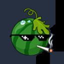 一个西瓜.png