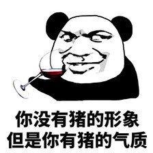 熊猫表情包3.jpg