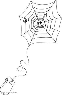 搞笑视频,蜘蛛网