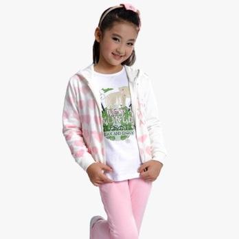 童装套装女童运动套装2013秋装儿童运动服女