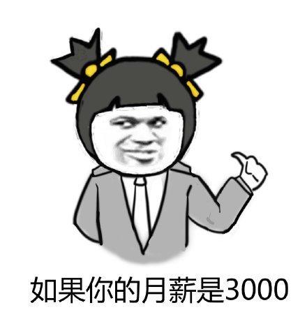 月入3000的我表情包1.jpg