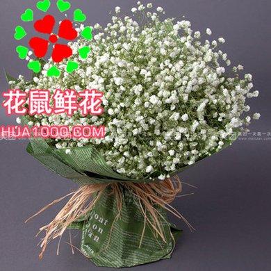 满天星韩式花束图片:韩式花束
