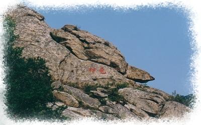 招远罗山国家森林公园照片分享展示