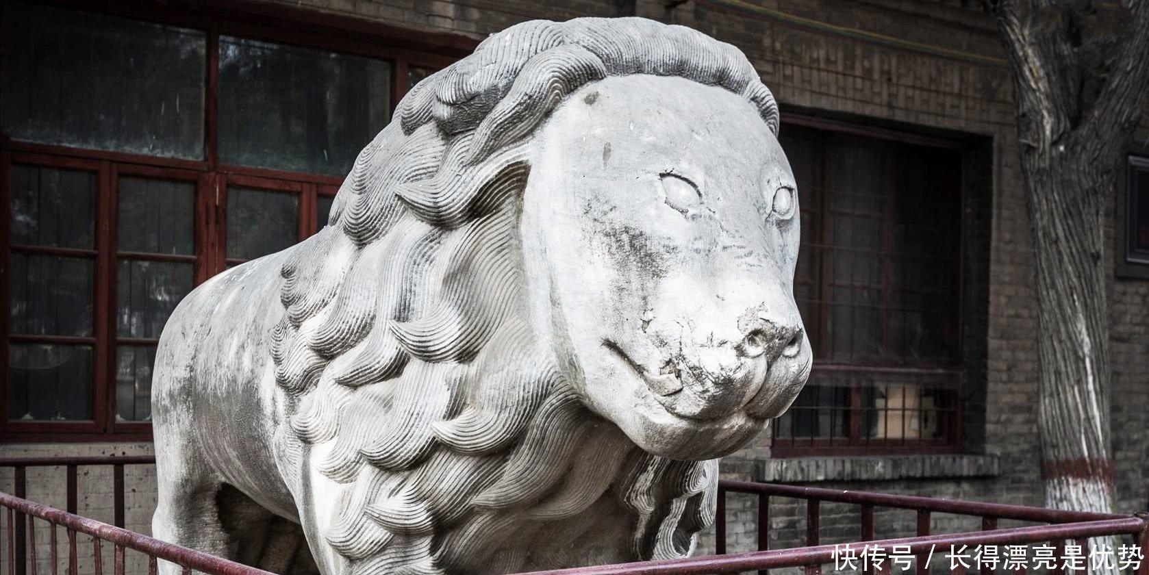 袁世凯家在河南项城,死后却葬在安阳,其女儿吐露出... _腾讯网
