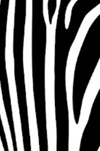 斑马纹壁纸下载_v1_安卓手机版apk-优亿市场