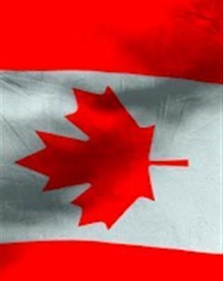 加拿大国旗v,安卓手机软件下载