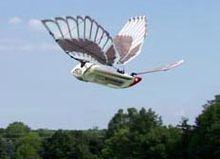 扑翼空气动力学还末成熟,无法指导飞行器设计.二材料难题.三.结构难.图片