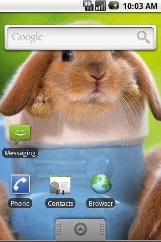 可爱小兔子第五辑主题壁纸