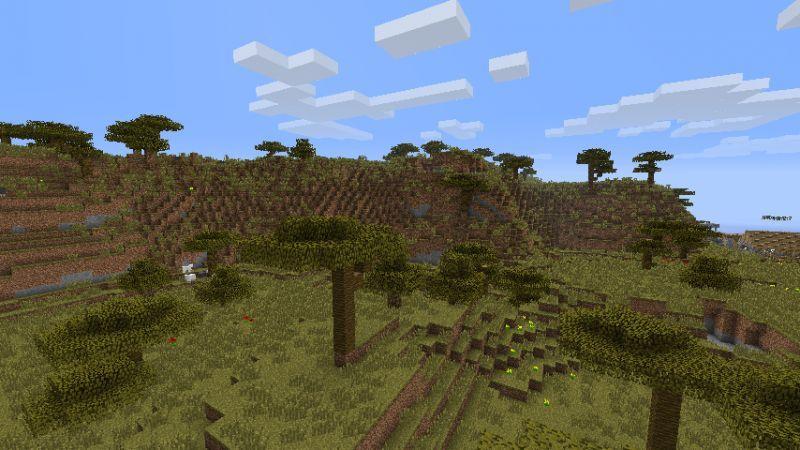 Savanna Plateau.jpg