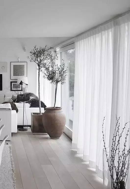 沙发窗帘都能洗的妙法:学这招家里无脏物 - 【医药前沿】专业攻克各类骨性疾病