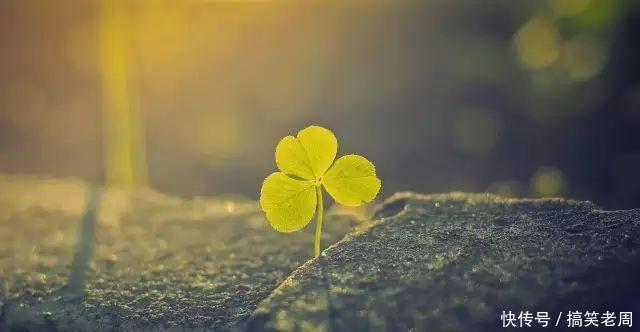 好心态让你快乐一生,好习惯养成好性格,好性格带来好命运!