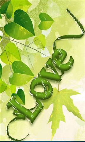 手机壁纸绿色可爱
