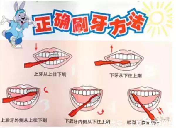 牙膏,漱口杯,棉签 技术指导:一开始就应该注意让孩子掌握正确的刷牙