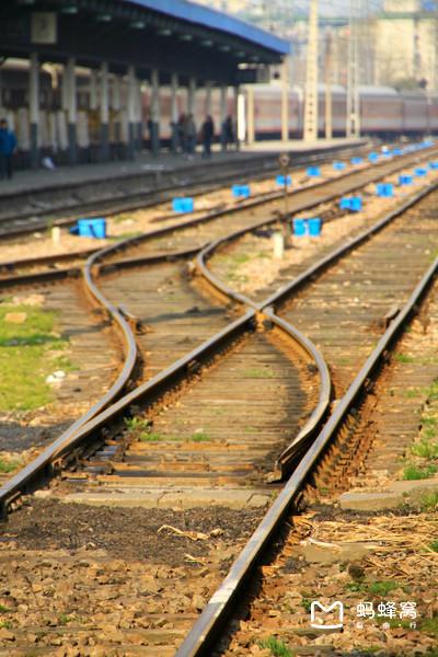 允许动物乘坐的火车,人们更需要! -  - 真光 的博客