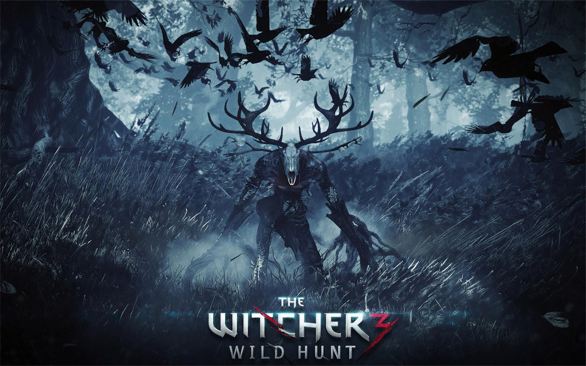 《巫师3》开发商看好NX 表示任天堂硬件难有优势
