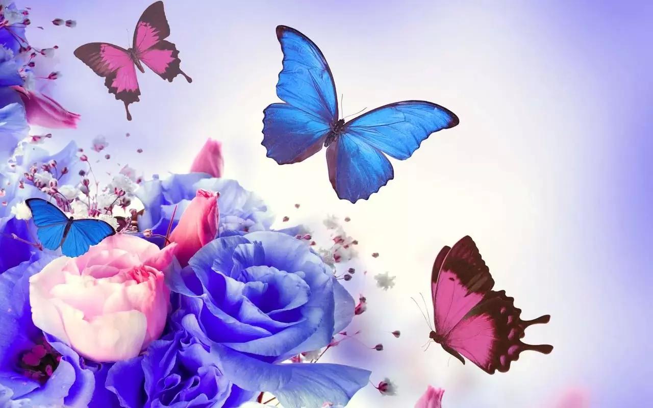 屏幕根据蝴蝶的动态壁纸你的情绪手势的效果