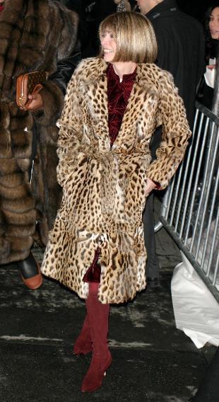 看明星如何搭配豹纹大衣
