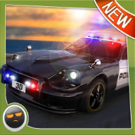 World Wide Police Chase 3D!