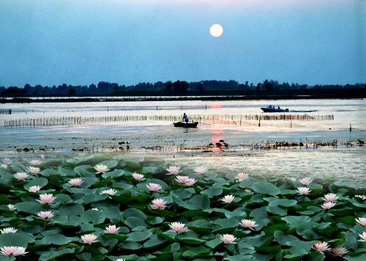 5 焦岗湖 岗湖生态旅游度假区位于淮南市西南部,北距毛集镇1公里,102