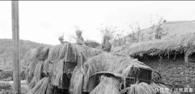 强悍的对手!志愿军精心用稻草伪装的汽车为什么总是被美军识破?