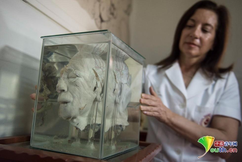 胆小慎入:探访秘鲁人类大脑博物馆 - 一统江山 - 一统江山的博客