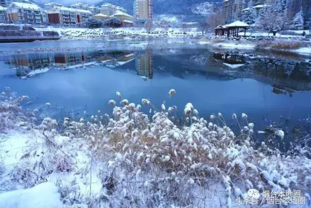 一场大雪,烟台如诗!最好看的雪景都在这里了