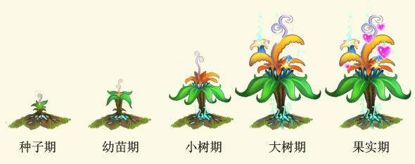 的花的结构示意图