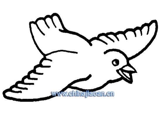 简笔画之如何画飞翔的喜鹊