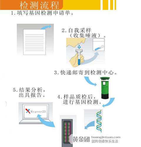 基因体检流程图片