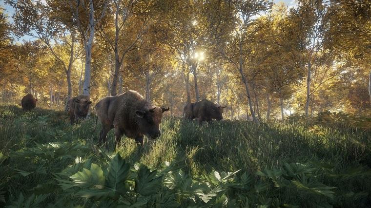 《猎人:野性的呼唤》游戏画面