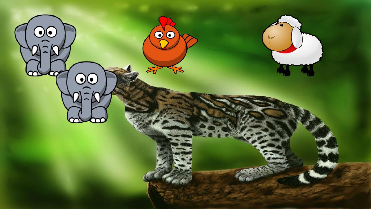 动物比赛为孩子官方下载