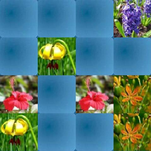 Flowers Hard Memory Game (HMG)