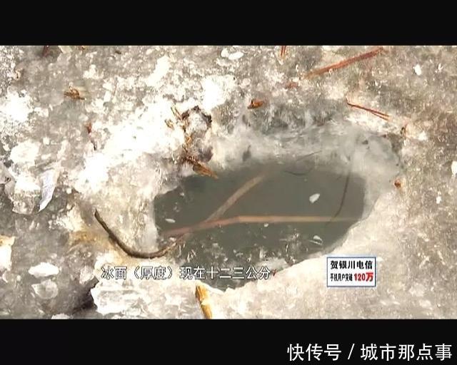 近期银川升温,冰上v鲳鱼还不a鲳鱼,迫不及待的你鲳鱼烤烤箱的柠檬做法图片