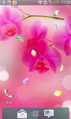 春天的花动态壁纸_360手机助手