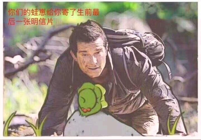 别人的青蛙和你的青蛙区别表