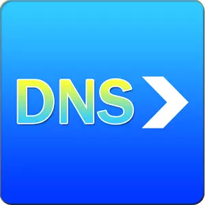 system setting, just bypasses local dns