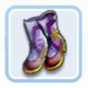 迪斯凯特的便靴