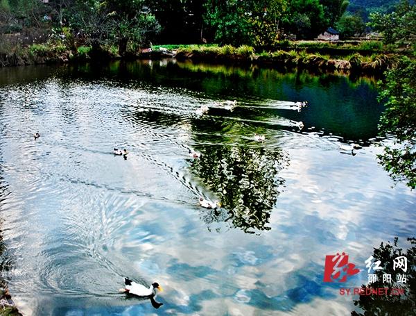 雷振梁)湖南省邵阳市绥宁县花园阁属国家湿地公园,距离长沙4小时车程