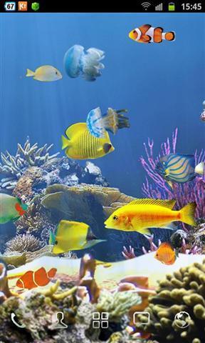 软件 聊天通讯 >海底世界壁纸