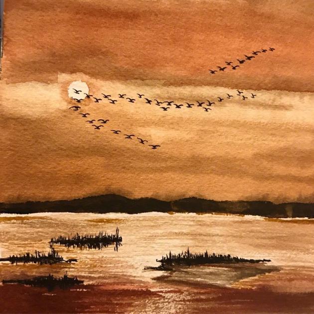 """6月12日,徐静蕾微博发文称:""""一抬眼,太阳就落山了."""