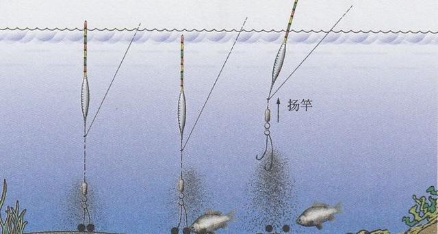 [转载]双钩钓鱼的独特之处与作钓要领! - 烟圈 - 烟圈的博客