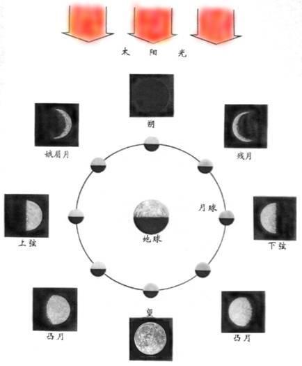 月亮变化卡通画